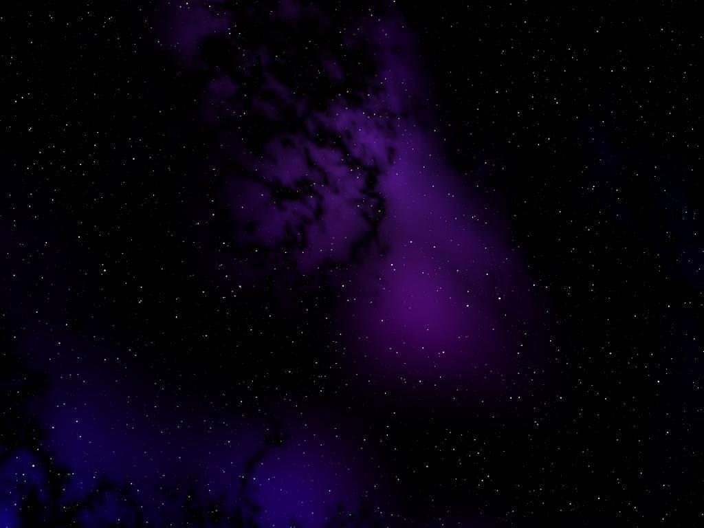 210+ Amazing Purple Backgrounds  Backgrounds  Design Trends