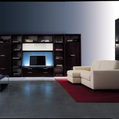 Simple Tv Wall Unit Designs For Living Room Sofa Diy 20+ Cabinet Designs, Decorating Ideas | Design ...