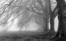 Creepy Backgrounds Wallpapers