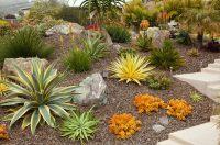 52+ Succulent Garden Designs | Garden Designs | Design Trends