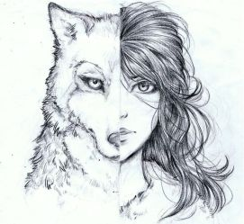 wolf half drawing drawings trends amazing