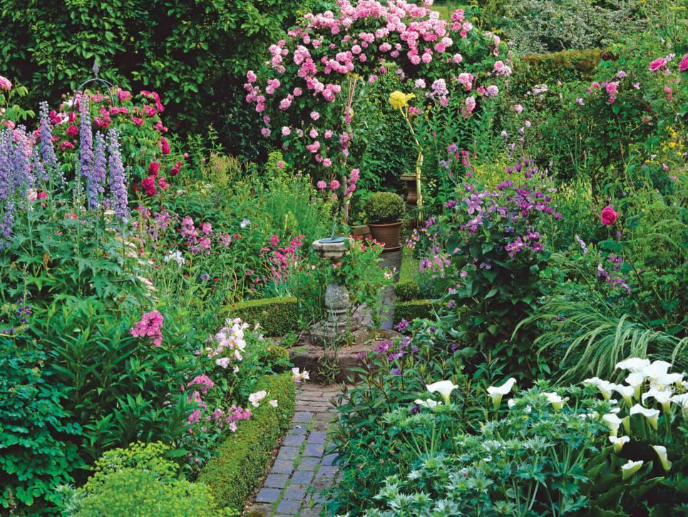 Backyard Pond Landscaping