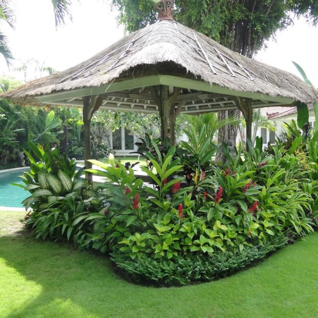 Tropical Backyard Ideas - Home Design Ideas on exotic garden design, hawaii garden design, tropical garden landscape design, tropical and flower garden ideas,