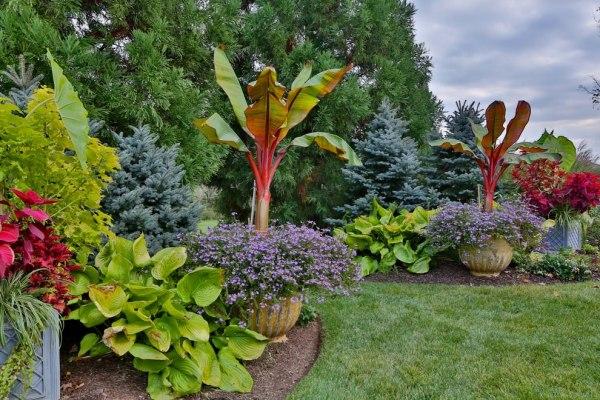 tropical garden design decorating