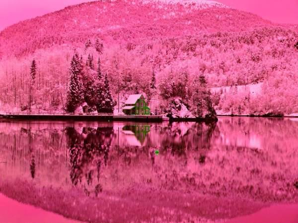 Amazing Pink Background Design Trends - Premium