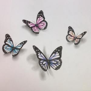 butterfly drawing 3d drawings graphic vector