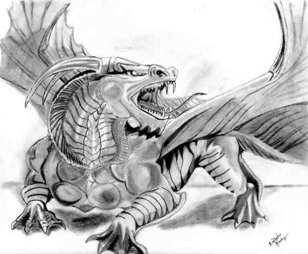 Realistic Dragon Drawings Design Trends - Premium Psd