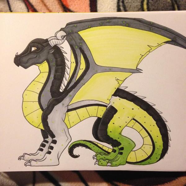 Realistic Dragon Drawings
