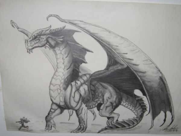 Realistic Dragon Drawings Design Trends