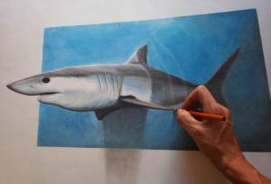 shark 3d pencil drawing sketch mako paper pastel drawings deviantart sketches wall nagi obsessions iza vector colorful