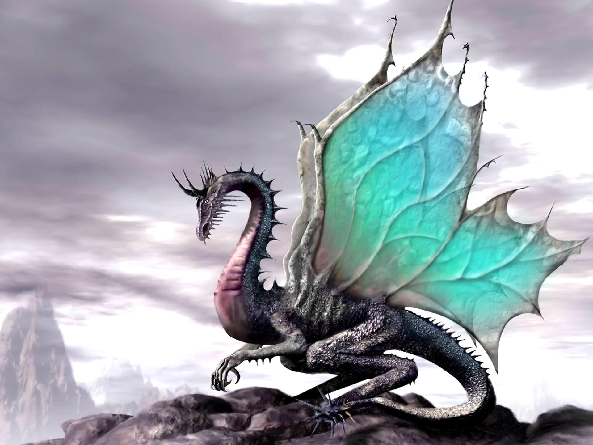 Dragon Wallpaper Pattern