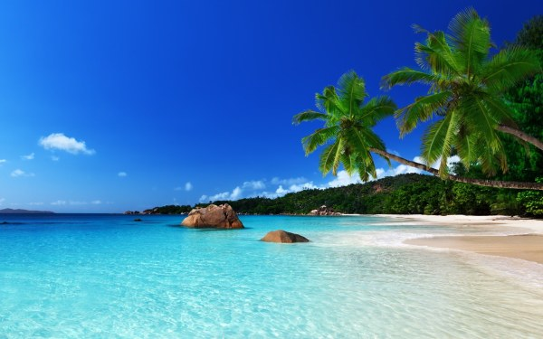 Tropical Beach Backgrounds Wallpapers