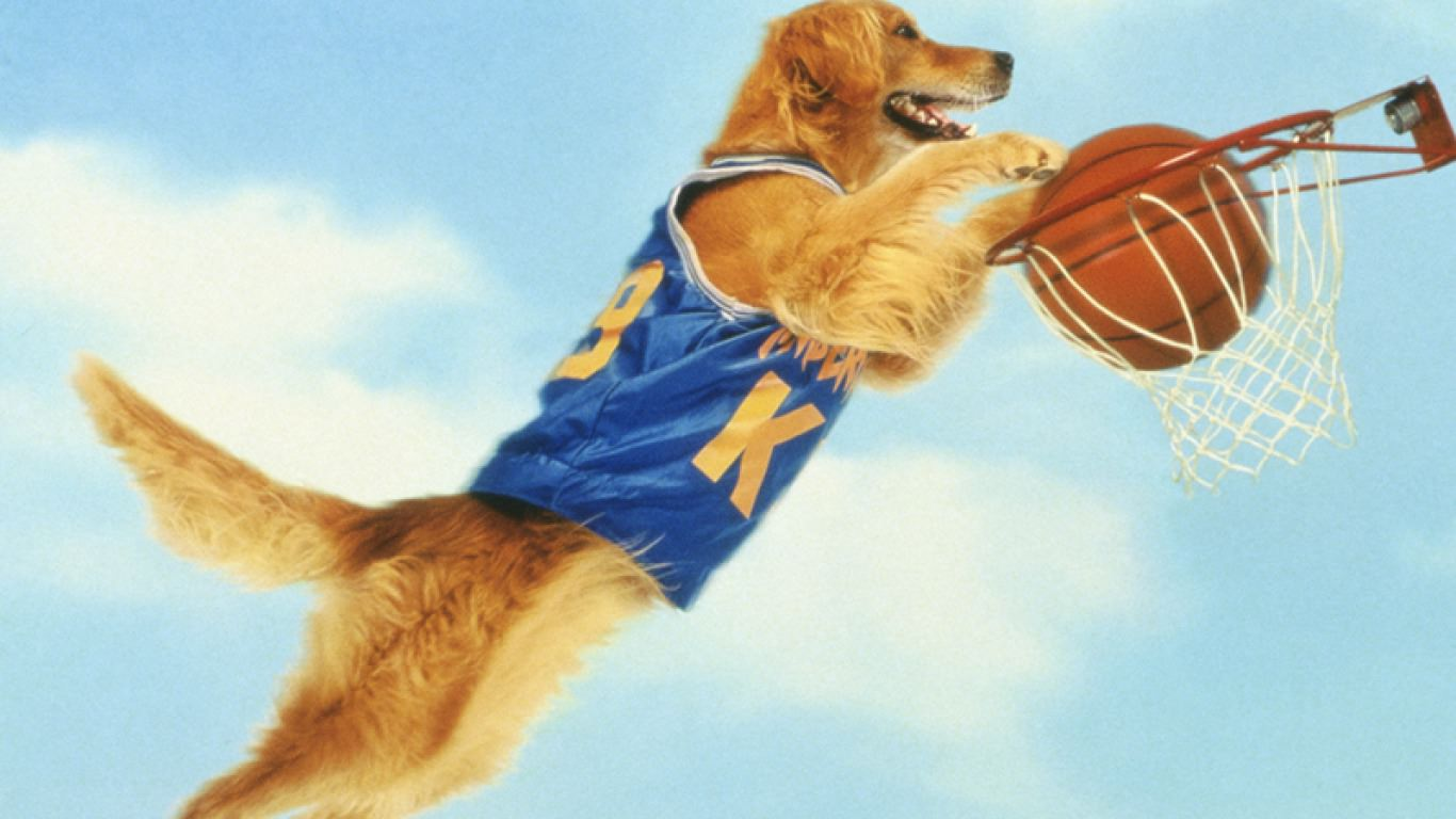 Nike Animated Wallpaper 25 Basketball Wallpapers Backgrounds Images Pictures