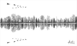 reflection lake drawing pen drawings ballpoint vereecke adam water sketches designtrends fabulous ball graphic