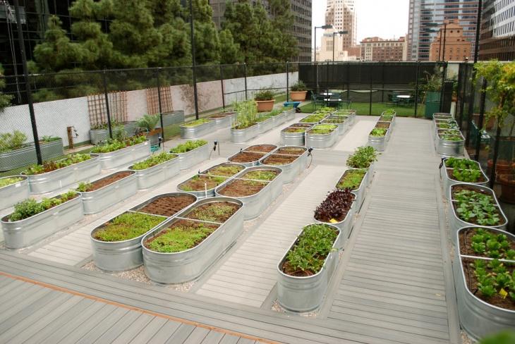 20 Raised Bed Garden Ideas Design Trends Premium PSD Vector