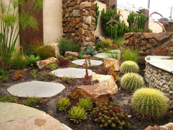 cactus rock garden design