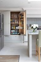 18+ Kitchen Pantry Ideas, Designs   Design Trends ...