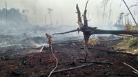 Penampakan Hutan Suaka Margasatwa di Riau yang Jadi Arang karena Terbakar