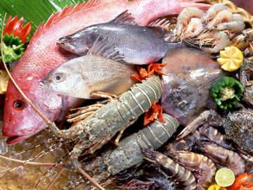 Seafood Pemicu Kolesterol?