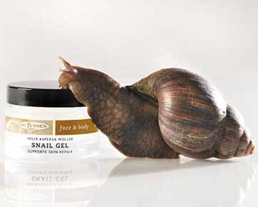 img.New Trend: Cure Acne with Snail Extract/beautyanddiets.com