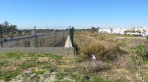 Parcela de Puerto Real en la que se quiere empezar a probar el resultado del 'ecopastoreo'.