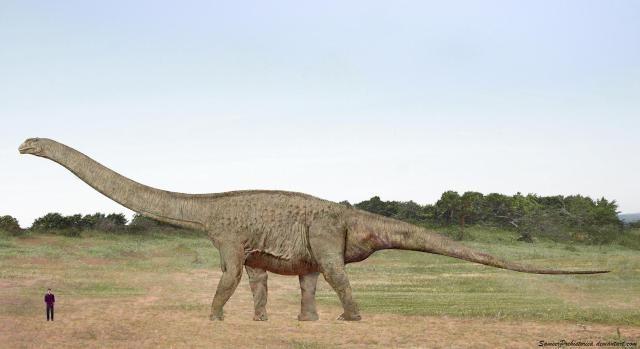 「argentinosaurus」の画像検索結果