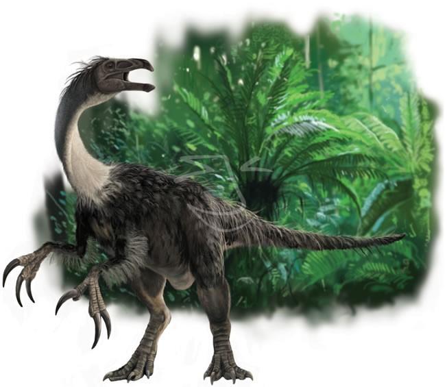 Segnosaurus Pictures Amp Facts The Dinosaur Database