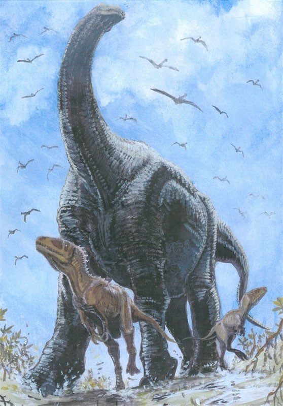 National Geographic Fall Wallpaper Bahariasaurus Pictures Amp Facts The Dinosaur Database