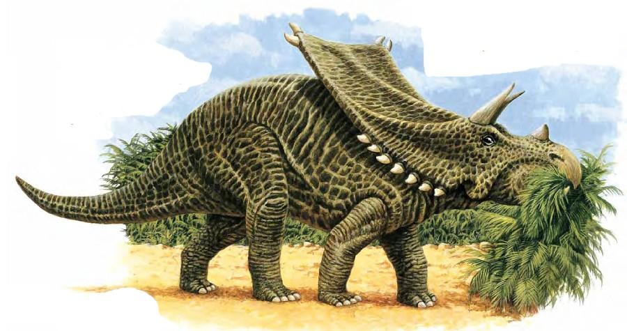 Resultado de imagen para Chasmosaurus