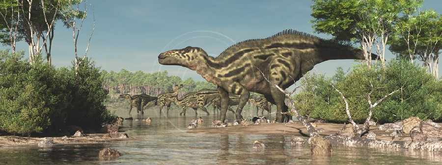 The Fall Bbc Wallpaper Shantungosaurus Pictures Amp Facts The Dinosaur Database