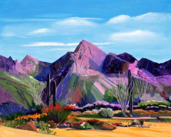 Pink Ocotillo Southwest Art Tucson Madaras