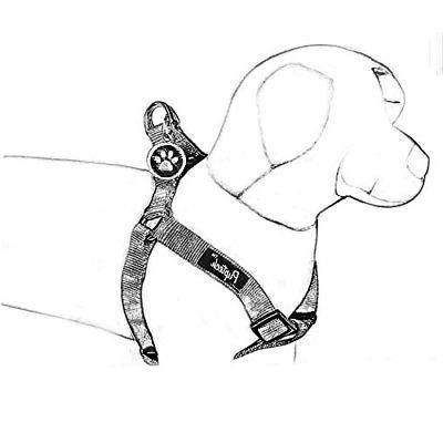 PUPTECK No Pull Dog Harness Adjustable Basic Nyl