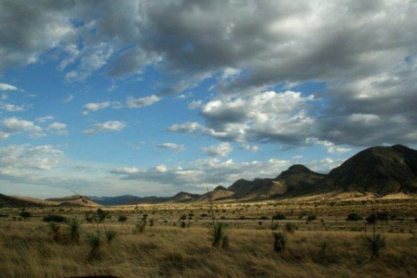texas landscape renee jordan