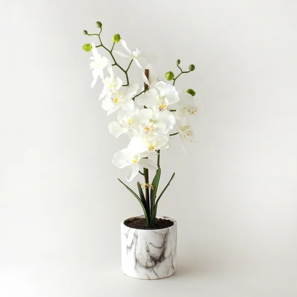 Artificial Orchid Cream In Marble Pot 56cm Dunelm