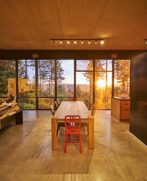 Best 58 Modern Dining Room Track Lighting Design Photos