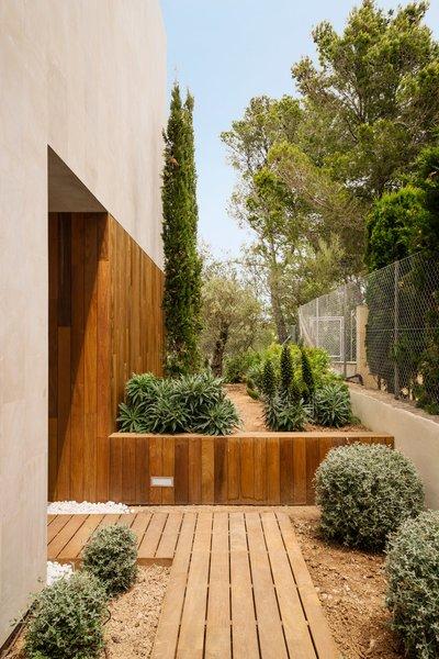 outdoor side yard walkways