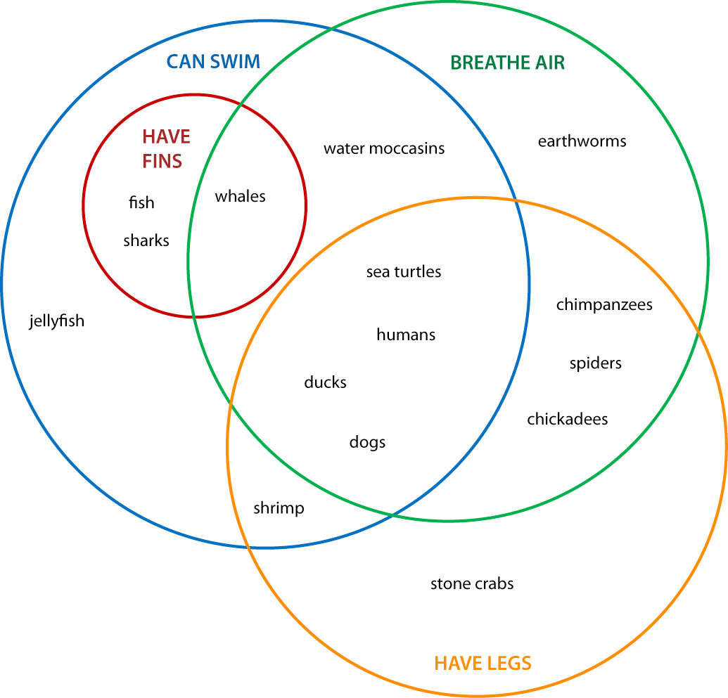 What Is A Venn Diagram Explain With Examples