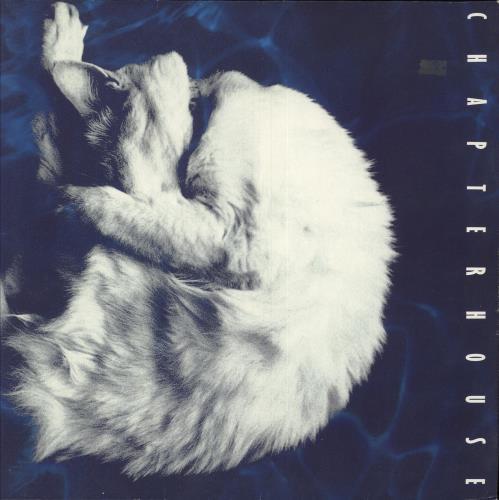 Chapterhouse Whirlpool vinyl LP album (LP record) UK CHOLPWH380847