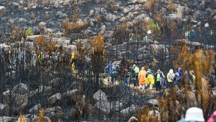 Ley de montes mejorará su gestión y evitará fuegos interesados, según Magrama