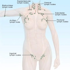 Where Are My Lymph Nodes Diagram Block Of Home Automation System Swollen Locations Causes Signs Test Treatment Picture Superficial In The Body