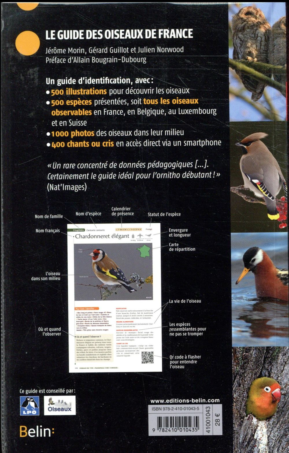 Guide Des Oiseaux De France : guide, oiseaux, france, Guide, Oiseaux, France, (édition, 2017), Jérôme, Morin,, Gérard, Guillot,, Julien, Norwood, Belin, Grand, Format, Livre, Fête, FIGEAC