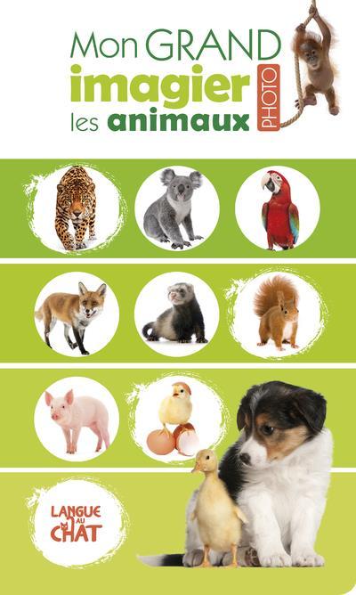 Imagier Animaux De La Ferme : imagier, animaux, ferme, Animaux, Grand, Imagier, Photo, Collectif, Langue, Format, Paroles, MANDE