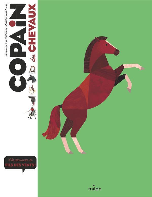 C Est Pas Sorcier Le Cheval : sorcier, cheval, COPAIN, CHEVAUX