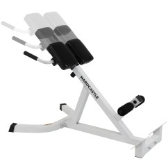 Roman Chair Back Extension Muscles Grey Damask Covers Adjustable Hyperextension Gym Bench