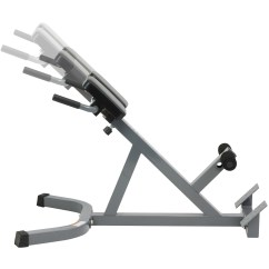 Roman Chair Back Extension Muscles Folding Price In Pakistan Dtx Fitness Hyper Exercise Bench