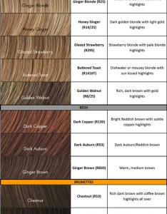 Pro extensions color chart also  quality hair accessories rh ppe rus