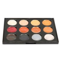 Cosmic Shimmer Iridescent Watercolour Paint Palette ...