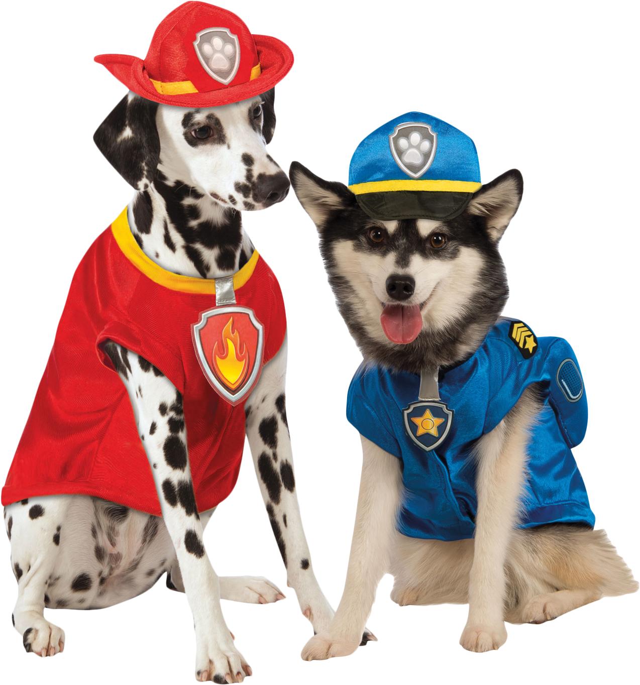 Paw Dogs Cartoon Patrol