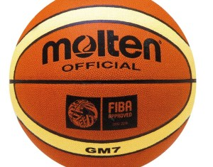 Molten Gm Basketball
