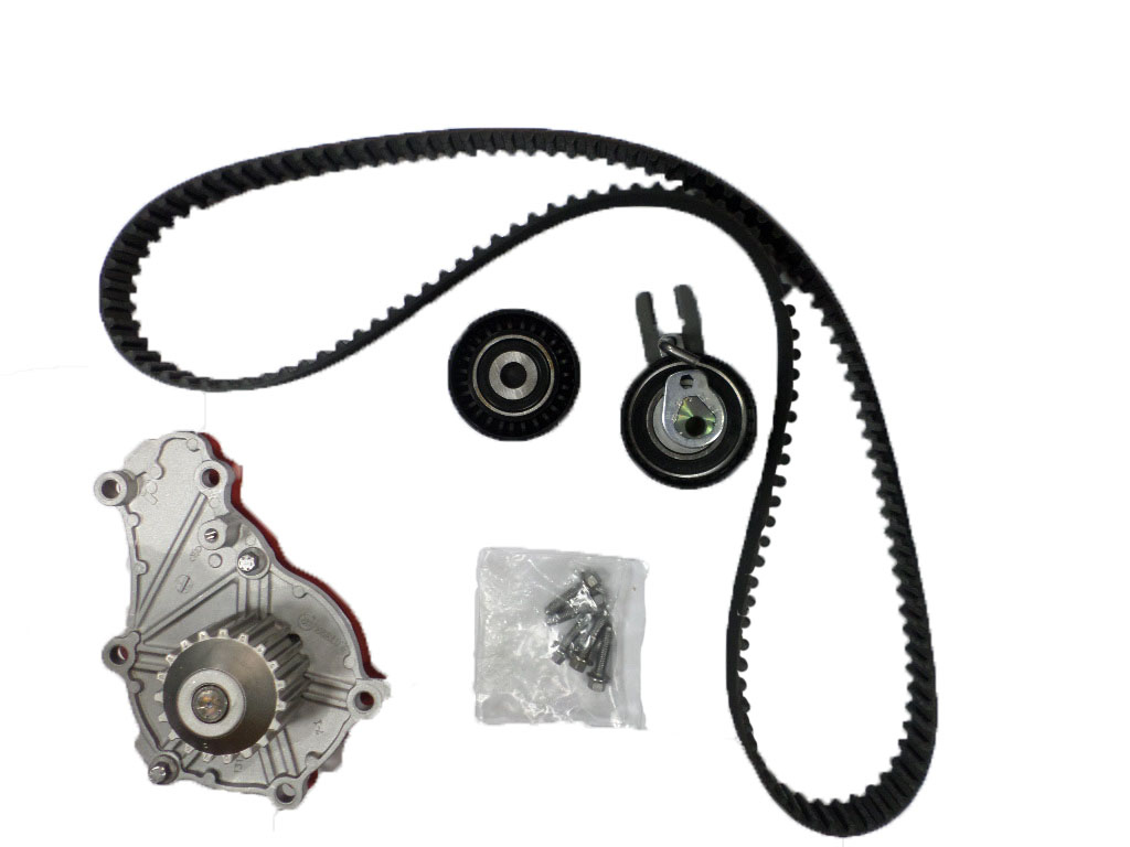 Service manual [2013 Ford Fiesta Water Pump Belt